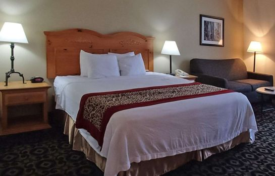 Chambre Quality Inn & Suites University