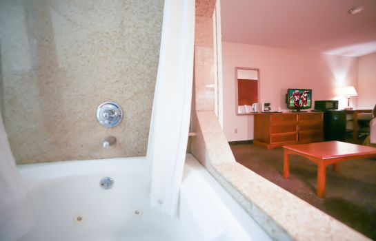 Suite SURESTAY PLUS BY BEST WESTERN EVANSVILLE