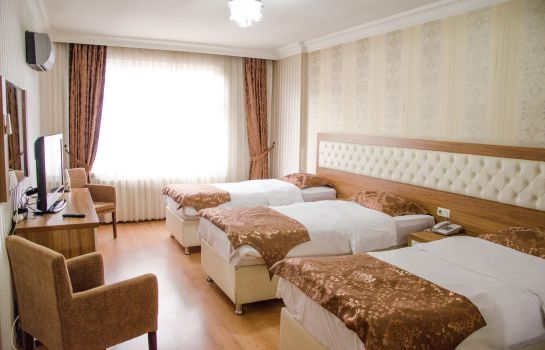 Triple room Malatya Has Hotel