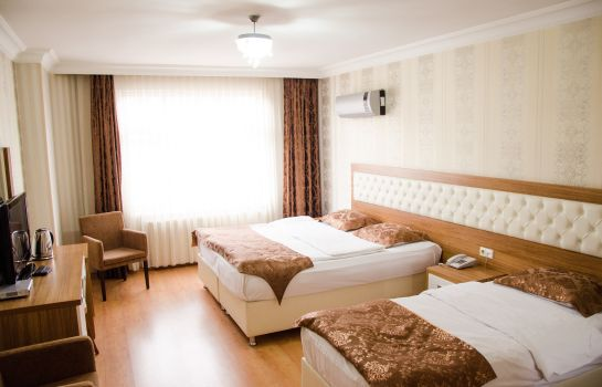 Double room (superior) Malatya Has Hotel