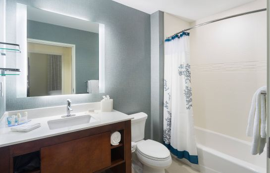Suite Residence Inn Houston West/Beltway 8 at Clay Road