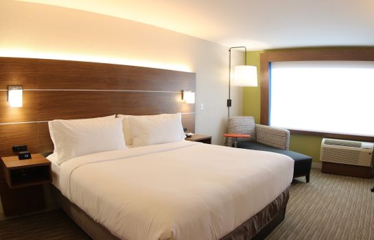 Zimmer Holiday Inn Express & Suites DETROIT NORTHWEST - LIVONIA