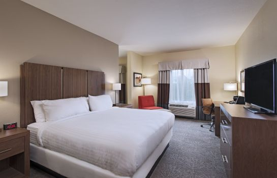Suite Holiday Inn Express & Suites AUSTIN NW - FOUR POINTS