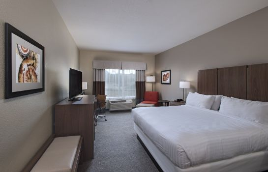 Room Holiday Inn Express & Suites AUSTIN NW - FOUR POINTS