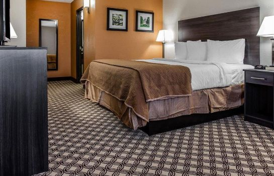 Suite Quality Inn and Suites Columbia Quality Inn and Suites Columbia