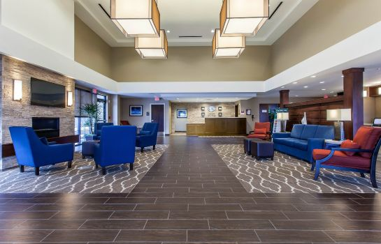 Hotelhalle Comfort Suites Youngstown North