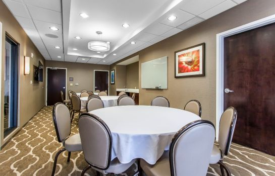 Sala konferencyjna Comfort Suites Youngstown North