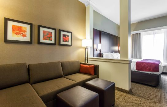 Zimmer Comfort Suites Youngstown North
