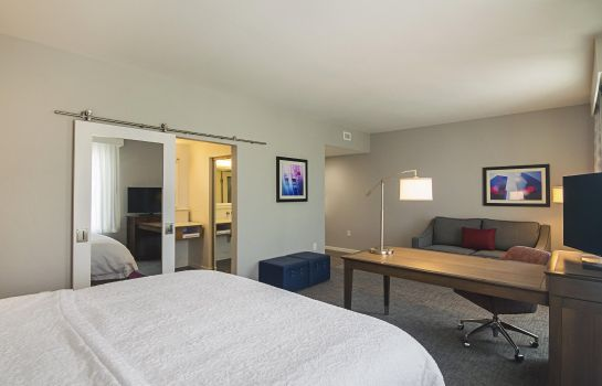 Suite Hampton Inn - Suites-Dallas-Richardson TX