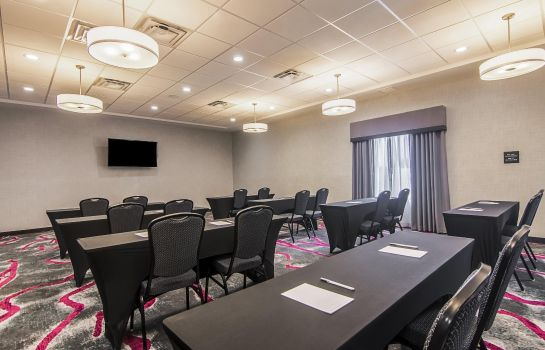 Conference room Hampton Inn - Suites-Dallas-Richardson TX