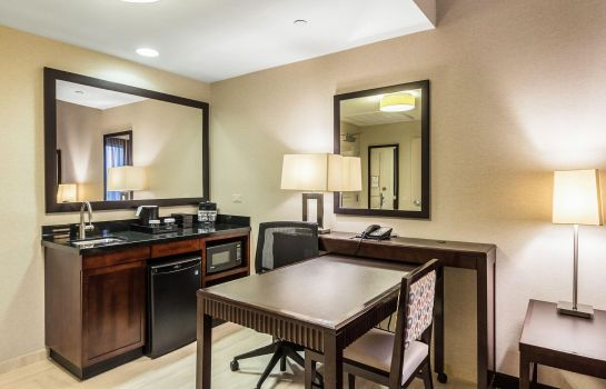 Suite Embassy Suites by Hilton Newark Airport
