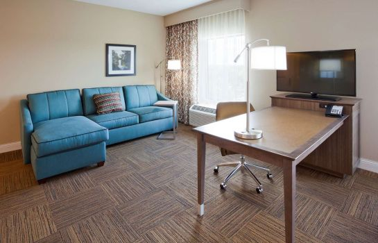 Suite Hampton Inn-Minneapolis-Roseville MN