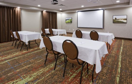 Sala konferencyjna Hampton Inn-Minneapolis-Roseville MN