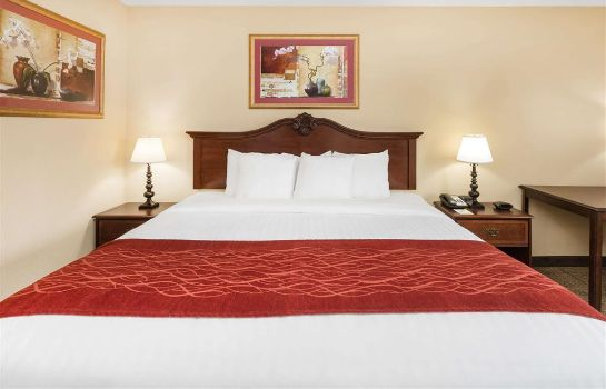 Room DAYS INN BY WYNDHAM VIDALIA