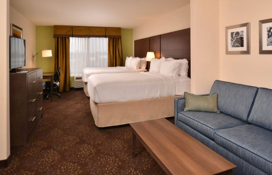 Suite Holiday Inn Express & Suites DEARBORN SW - DETROIT AREA