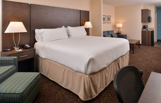 Zimmer Holiday Inn Express & Suites DEARBORN SW - DETROIT AREA