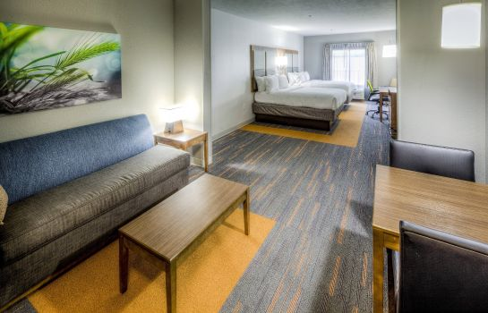 Zimmer Holiday Inn Express & Suites CLEVELAND WEST - WESTLAKE