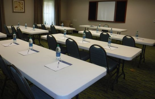 Sala konferencyjna Holiday Inn Express WEST JEFFERSON