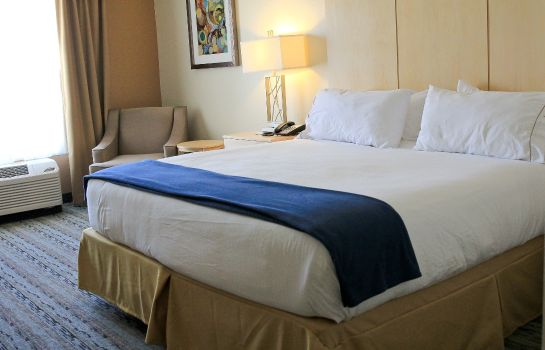 Zimmer Holiday Inn Express & Suites SAN ANTONIO - BROOKS CITY BASE
