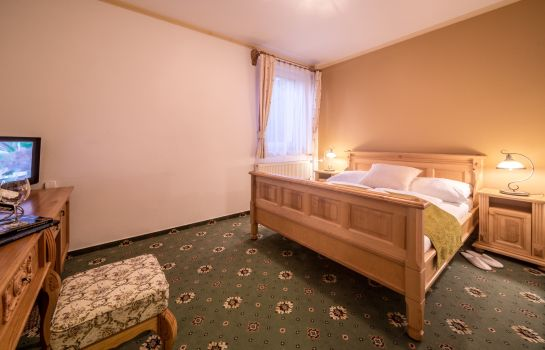 Double room (standard) Hotel DIANA