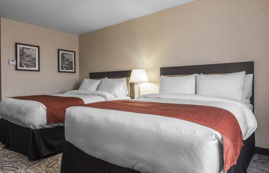 Camera Quality Inn & Suites Kingston