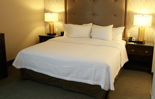 Suite Homewood Suites by Hilton Dallas Arlington South