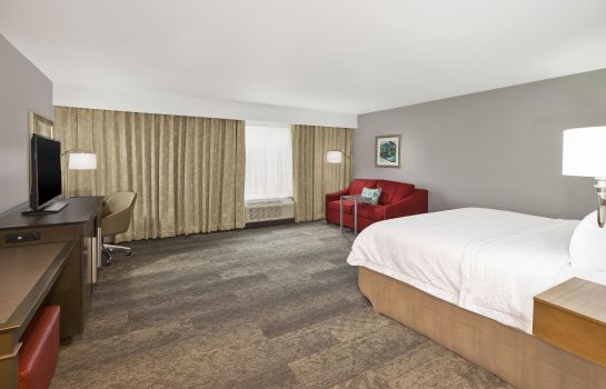 Suite Hampton Inn by Hilton Detroit Dearborn MI