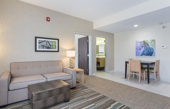 Suite Home2 Suites by Hilton Dallas Grand Prairie