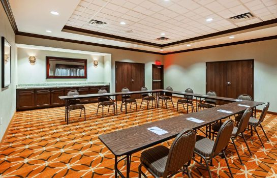 Sala konferencyjna Hampton Inn - Suites Houston I-10 West Park Row TX