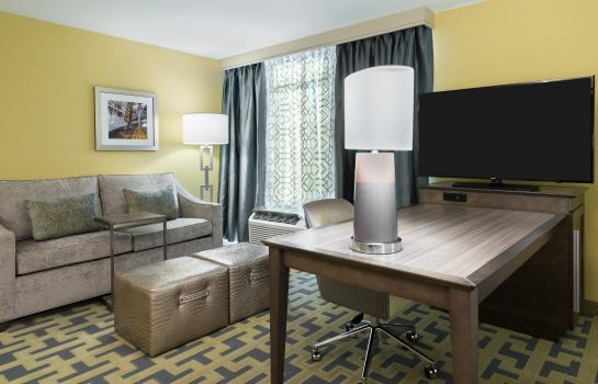 Suite HAMPTON INN - SUITES TAMPA AIRPORT AVION PARK WESTSHORE