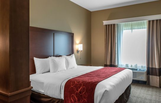 Chambre Comfort Suites Billings