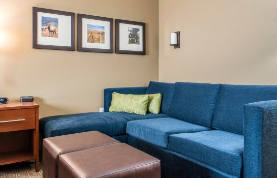 Pokój Comfort Suites Billings