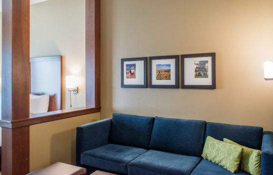 Habitación Comfort Suites Billings