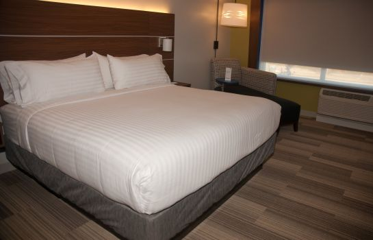 Chambre Holiday Inn Express & Suites DECATUR