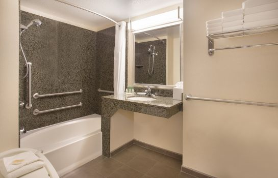Zimmer Holiday Inn & Suites SCOTTSDALE NORTH - AIRPARK