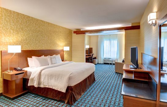 Suite Fairfield Inn & Suites Nashville MetroCenter