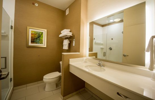 Kamers Fairfield Inn & Suites Cambridge