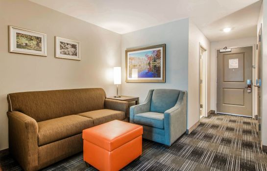 Suite Comfort Inn & Suites East Ellijay
