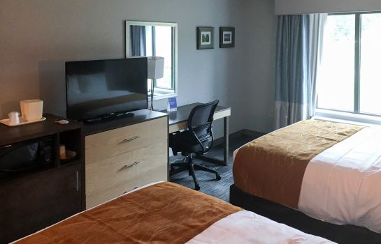 Chambre Comfort Inn & Suites East Ellijay