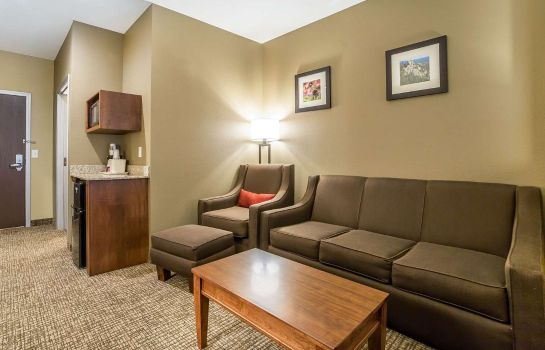 Suite Comfort Inn and Suites Near Mt. Rushmore