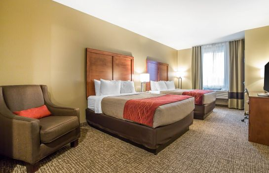 Chambre Comfort Inn & Suites Near Mt. Rushmore