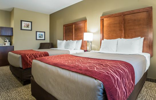 Kamers Comfort Inn & Suites Near Mt. Rushmore