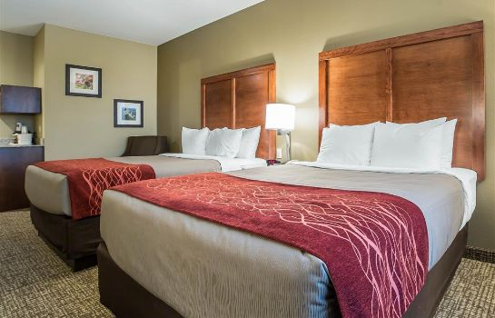 Room Comfort Inn and Suites Near Mt. Rushmore