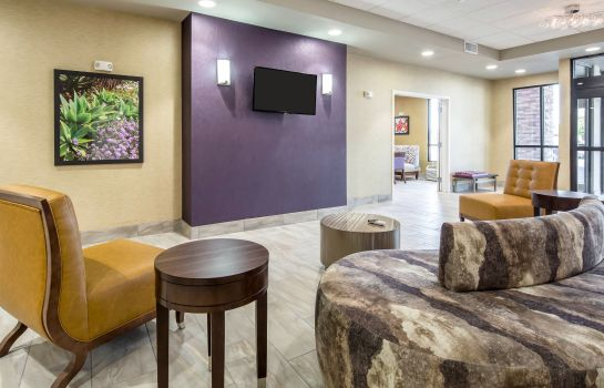 Hall Comfort Inn & Suites Lovington
