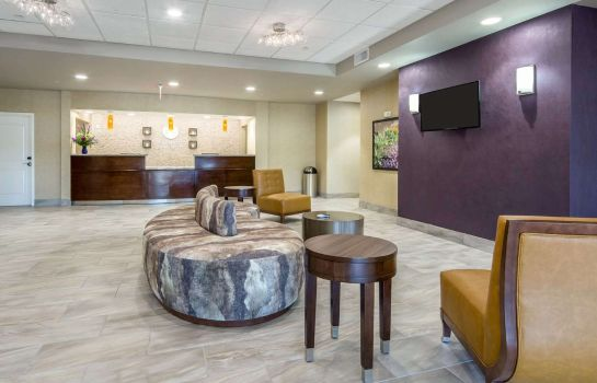 Hall Comfort Inn and Suites Lovington