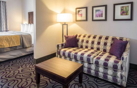 Suite Comfort Inn and Suites Lovington