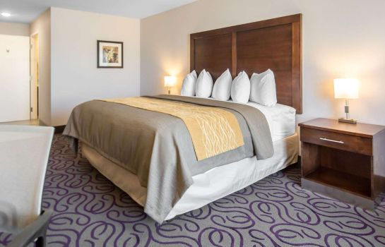 Room Comfort Inn & Suites Lovington