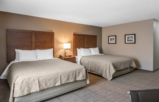 Room Comfort Inn South Chesterfield - Colonial Heights