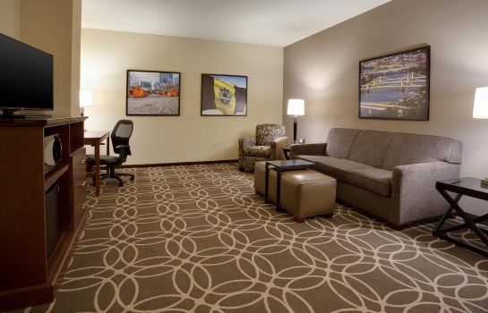 Suite DRURY PLAZA PITTSBURGH DOWNTOWN