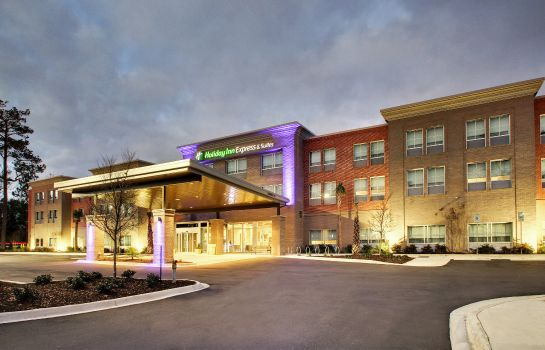 Widok zewnętrzny Holiday Inn Express & Suites CHARLESTON NE MT PLEASANT US17